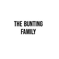 The-Bunting-Family.jpg